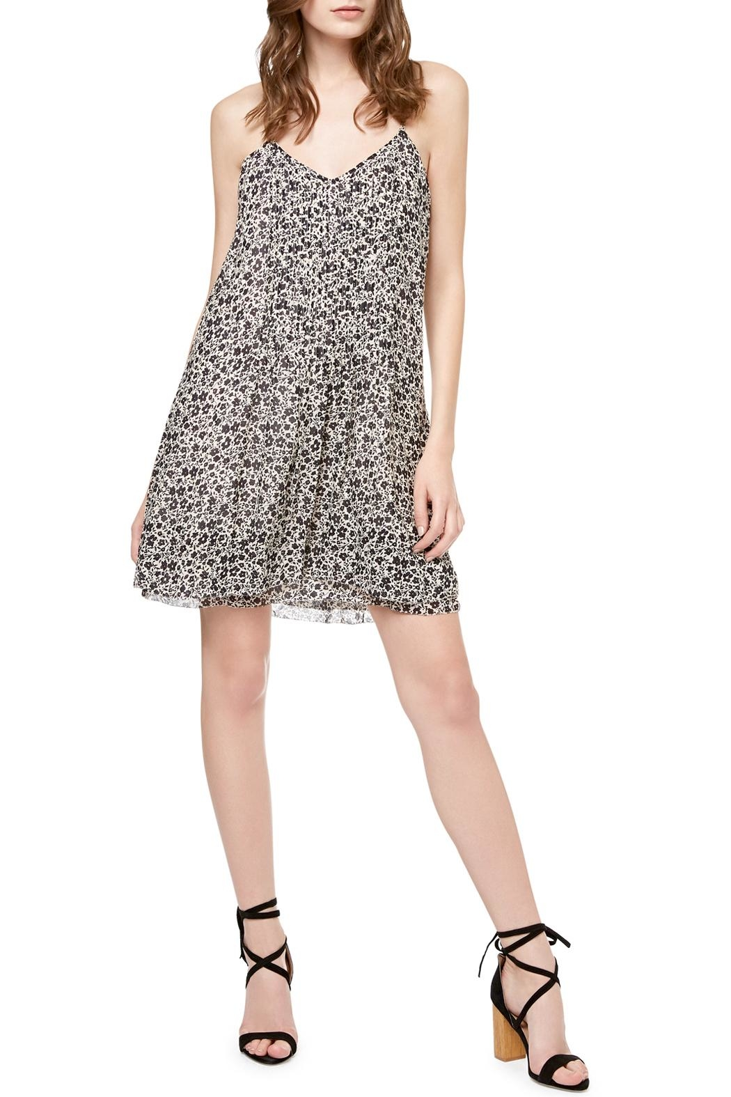 Sanctuary Spring Fling Dress - Front Cropped Image