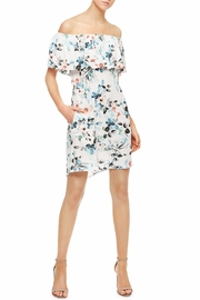 Sanctuary Stella Floral Dress - Product Mini Image
