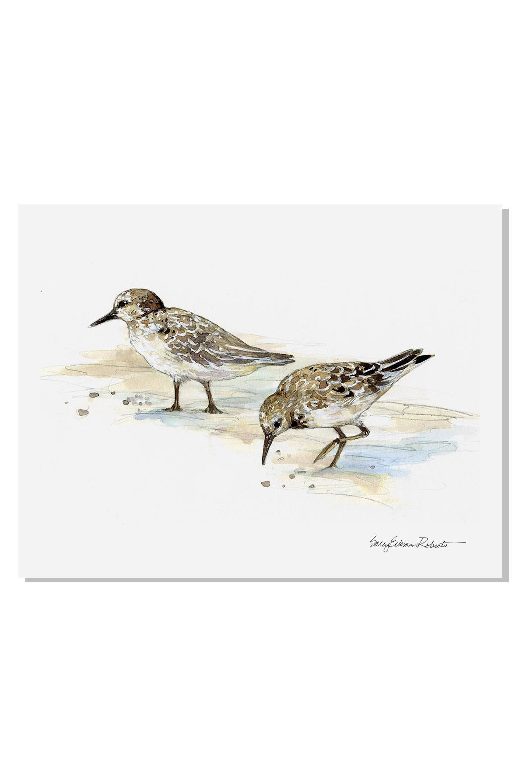 Sally Eckman Roberts Sandpiper Pair Print - Front Cropped Image