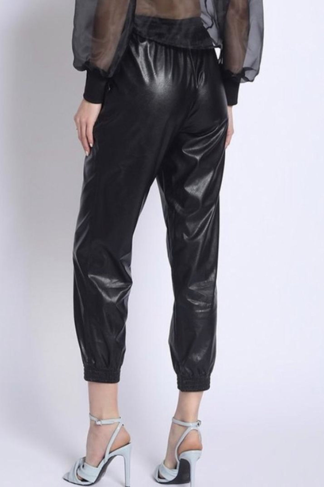 Sans Souci Faux Leather Pants - Front Full Image