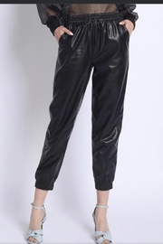 Sans Souci Faux Leather Pants - Front cropped