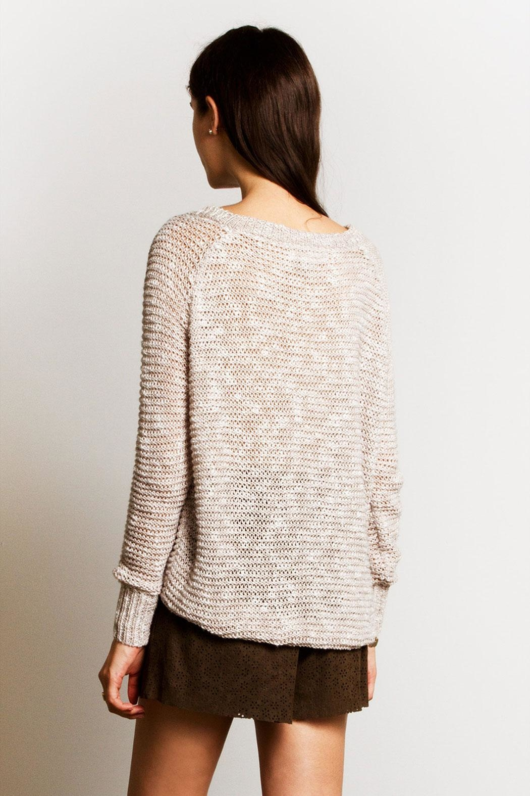 Sans Souci Jessica Crochet Sweater - Back Cropped Image
