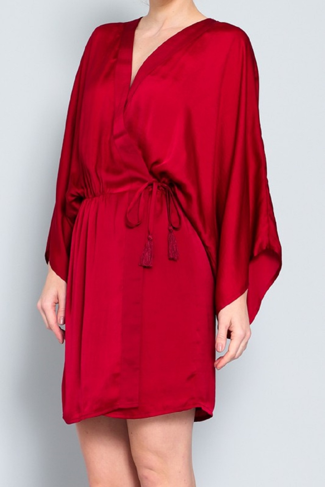 AAKAA Satin Wrap Dress - Side Cropped Image