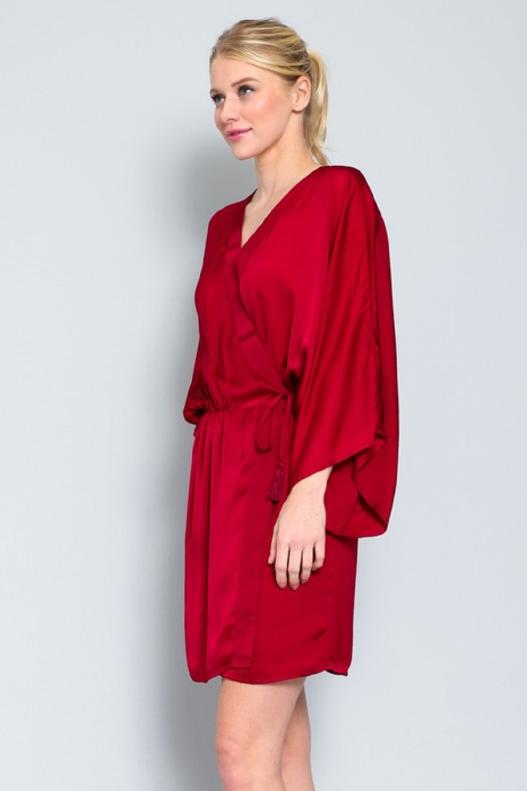 AAKAA Satin Wrap Dress - Front Full Image