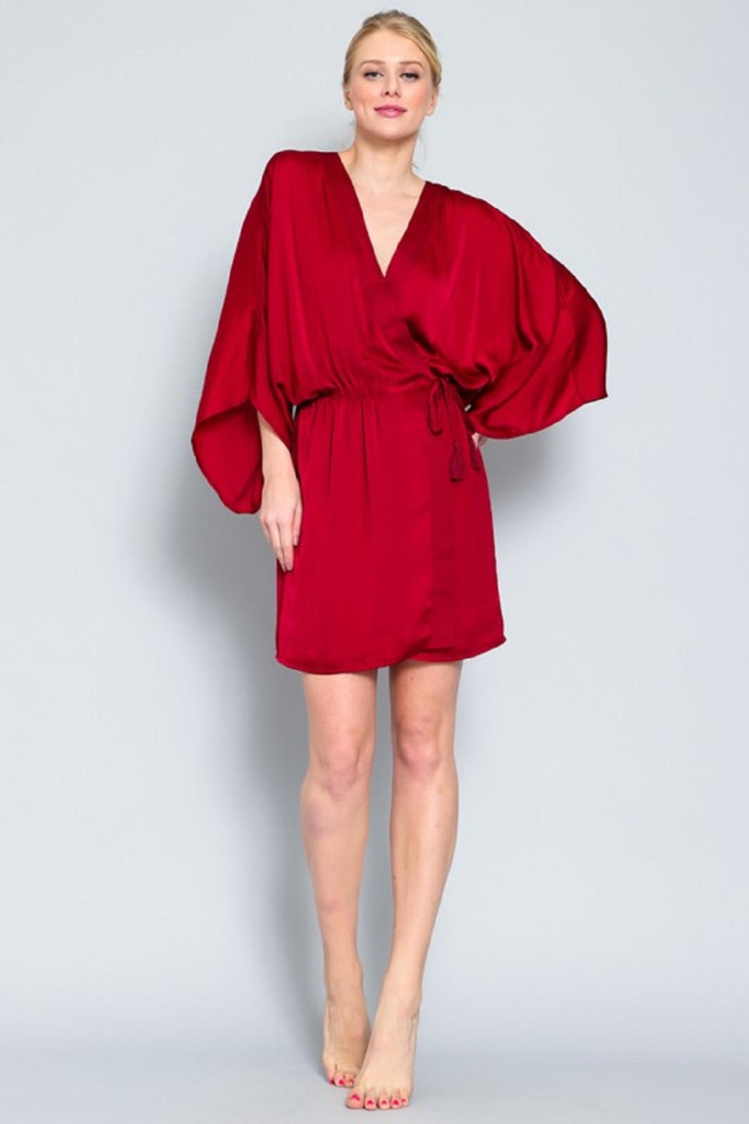 AAKAA Satin Wrap Dress - Front Cropped Image