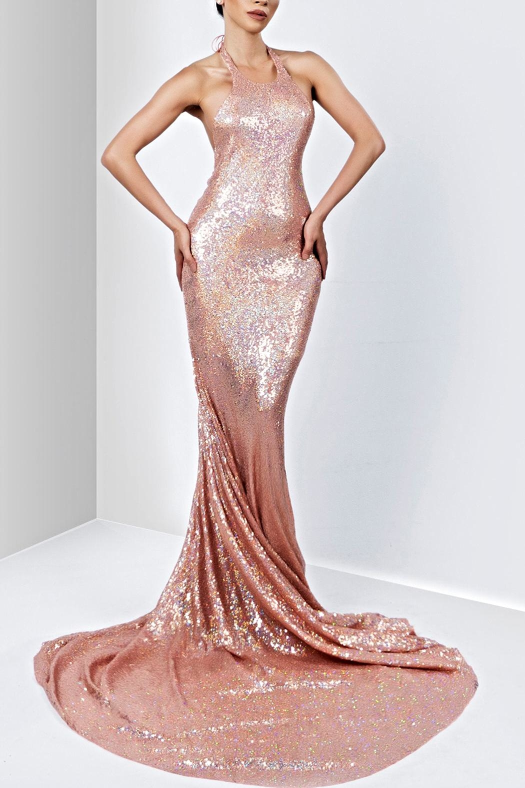 Savee Couture Savee Sequin Maxi Dress - Front Cropped Image