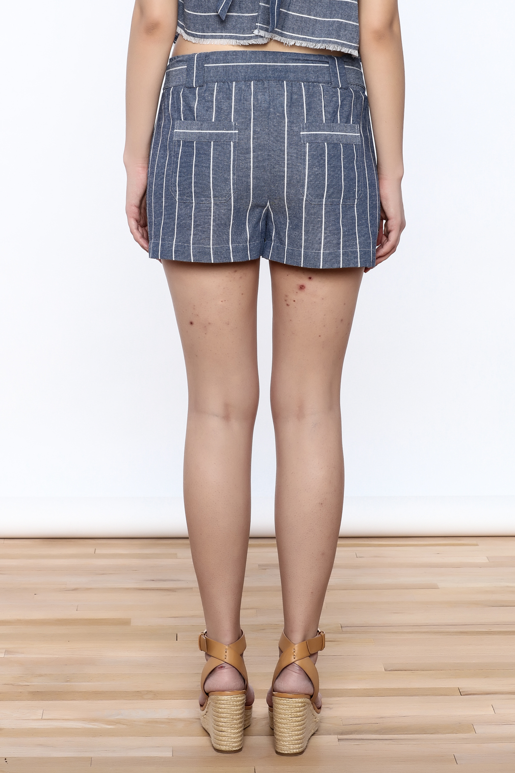 Saylor Cotton Stripe Shorts - Back Cropped Image