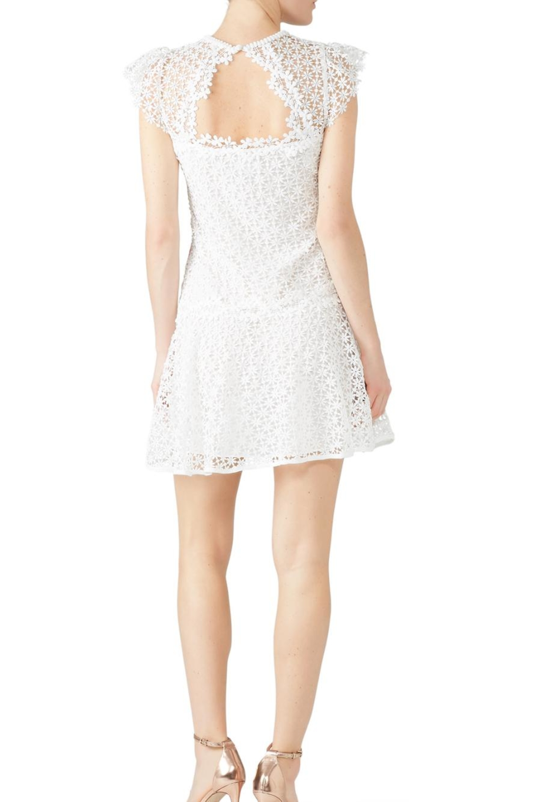 Saylor Embroidered Lizah Dress - Side Cropped Image