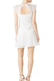 Saylor Embroidered Lizah Dress - Side cropped
