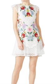 Saylor Embroidered Lizah Dress - Product Mini Image