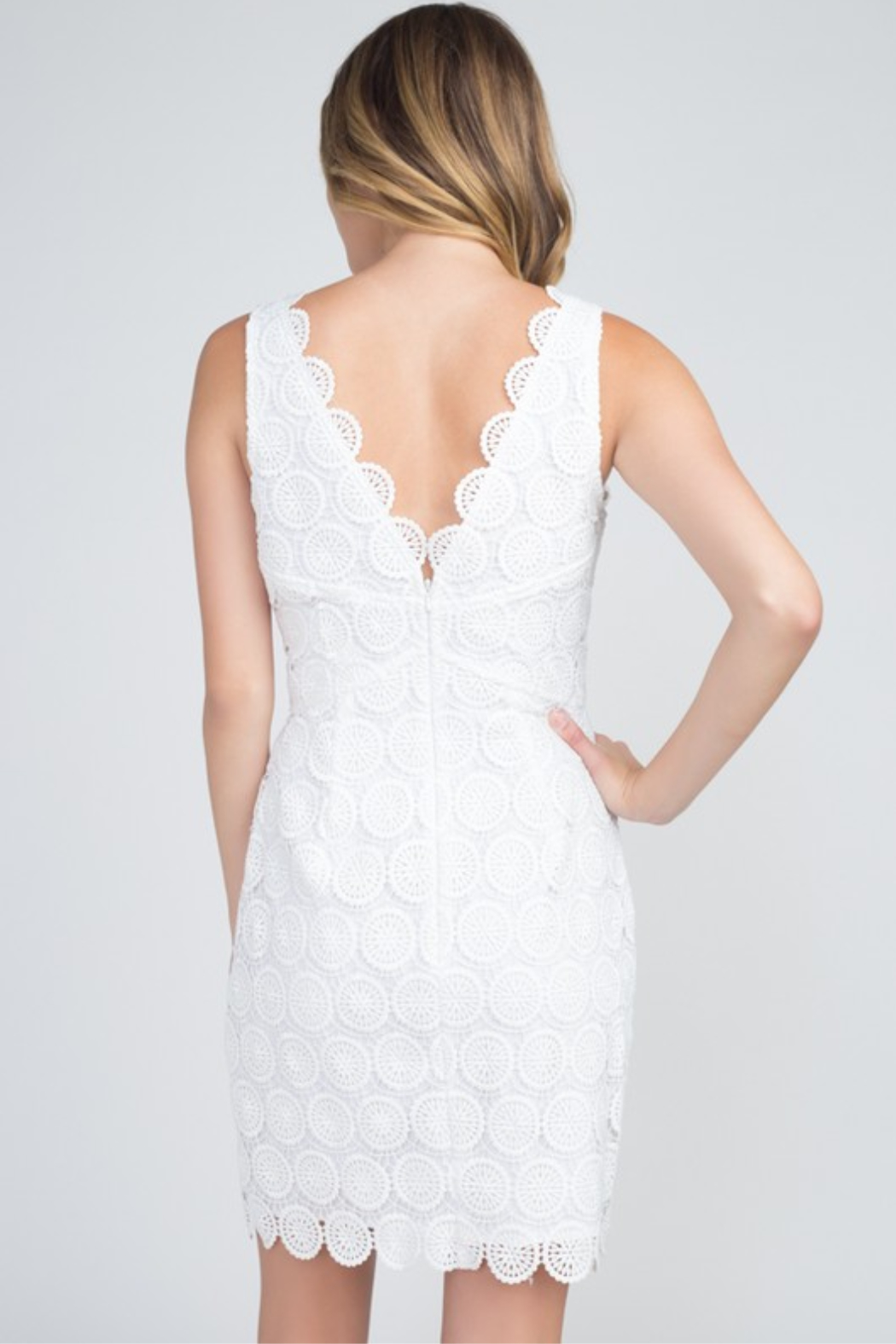 Minuet Scallop Trim Lace Dress - Front Full Image