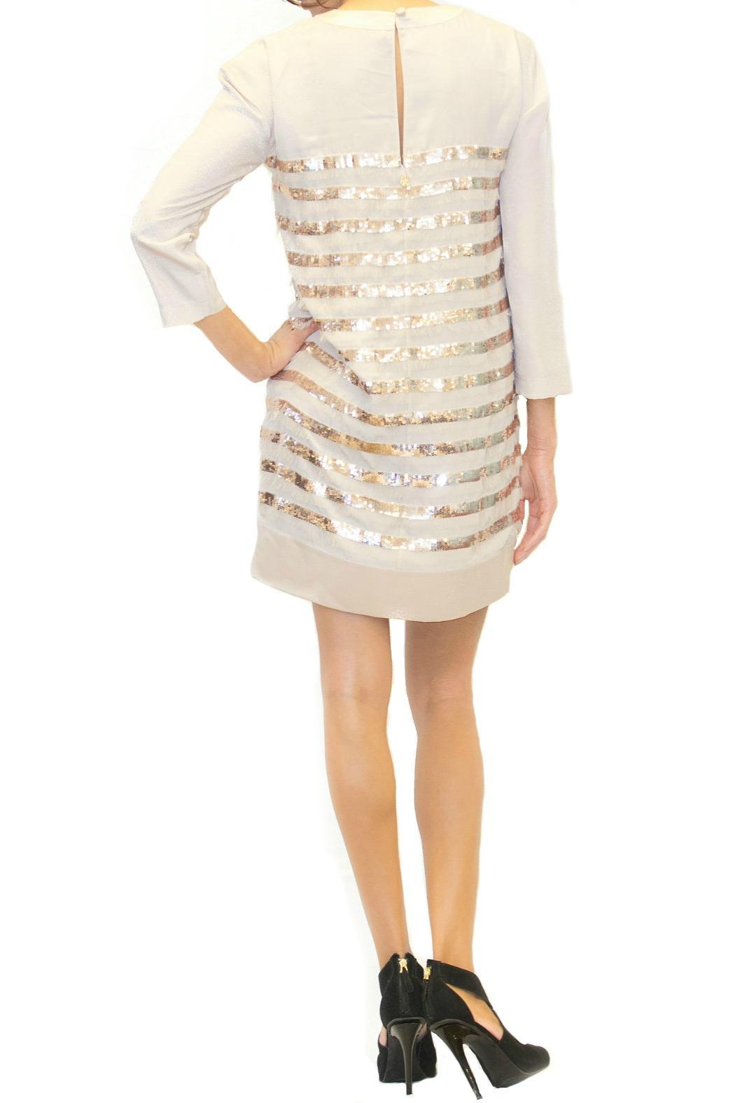 Scee Bronze Striped Dress - Front Full Image