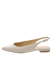 Schutz Pointed Shoes - Front full body