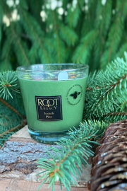 ROOT  Scotch Pine Candle - Product Mini Image