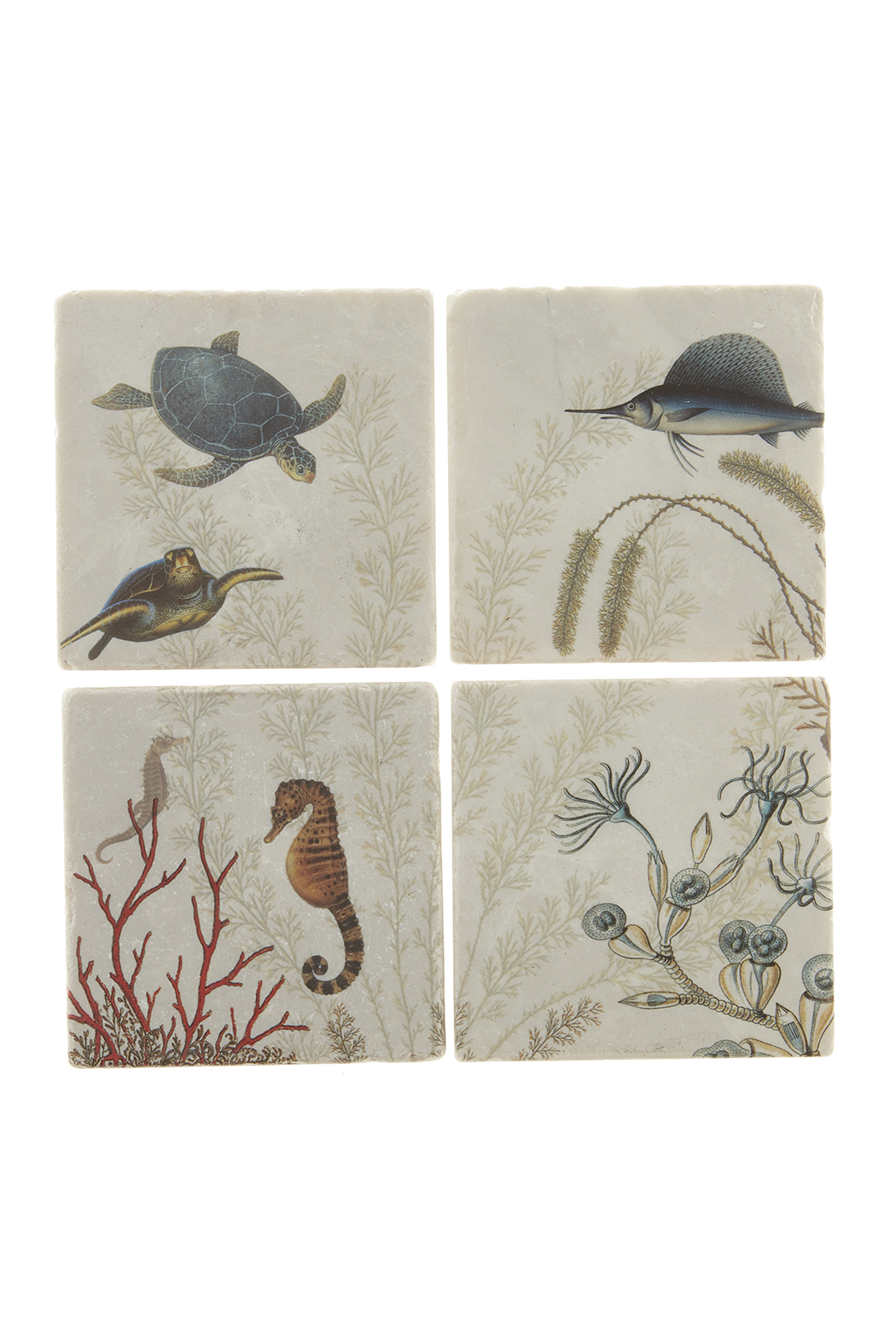 Screencraft Sea Creatures Coasters - Front Cropped Image