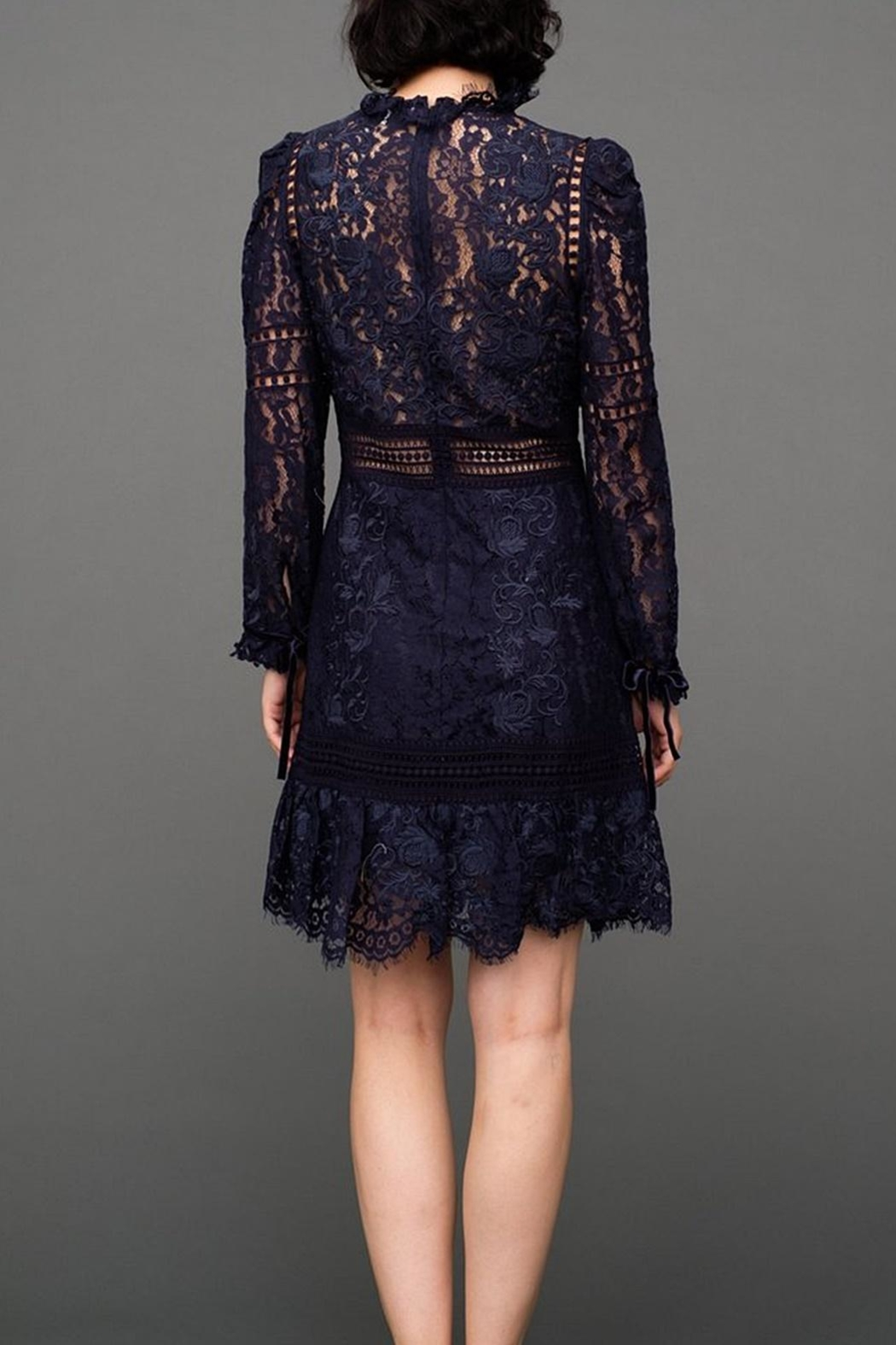 SEA Lace Embroidered Dress - Front Full Image
