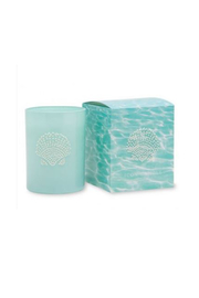 Primal Elements Sea Shell Candle - Product Mini Image