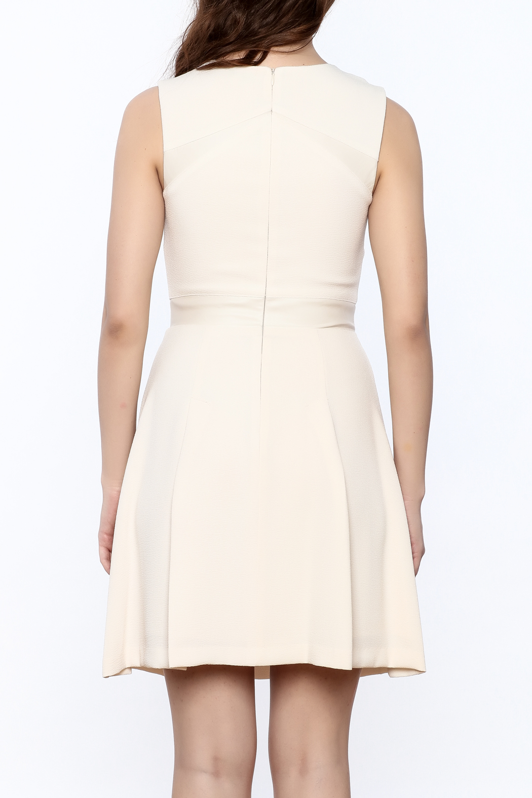 Search for Sanity Fit & Flare Dress - Back Cropped Image