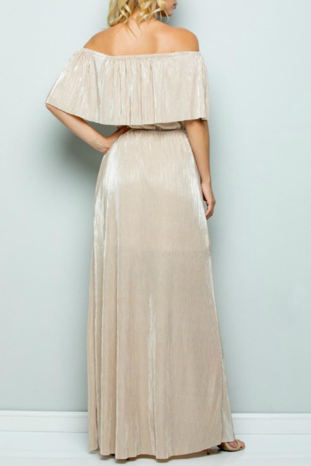See and Be Seen Metallic Maxi Dress - Front Full Image