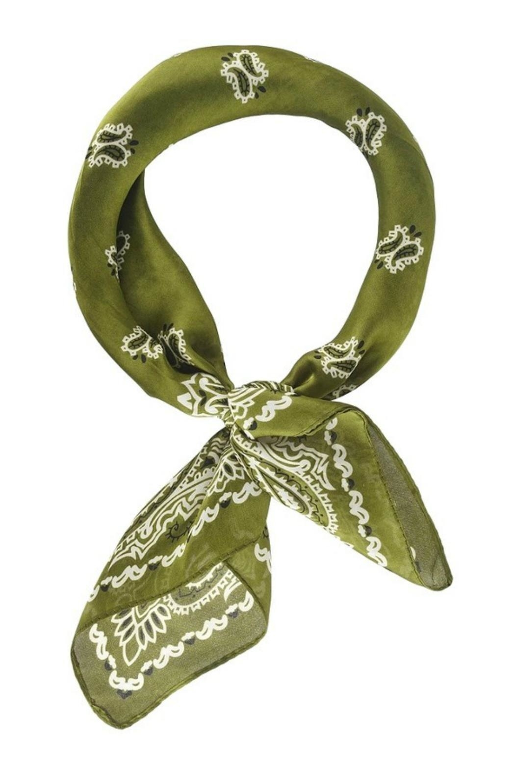 Olive & Pique Seeing Stars Scarf - Front Cropped Image