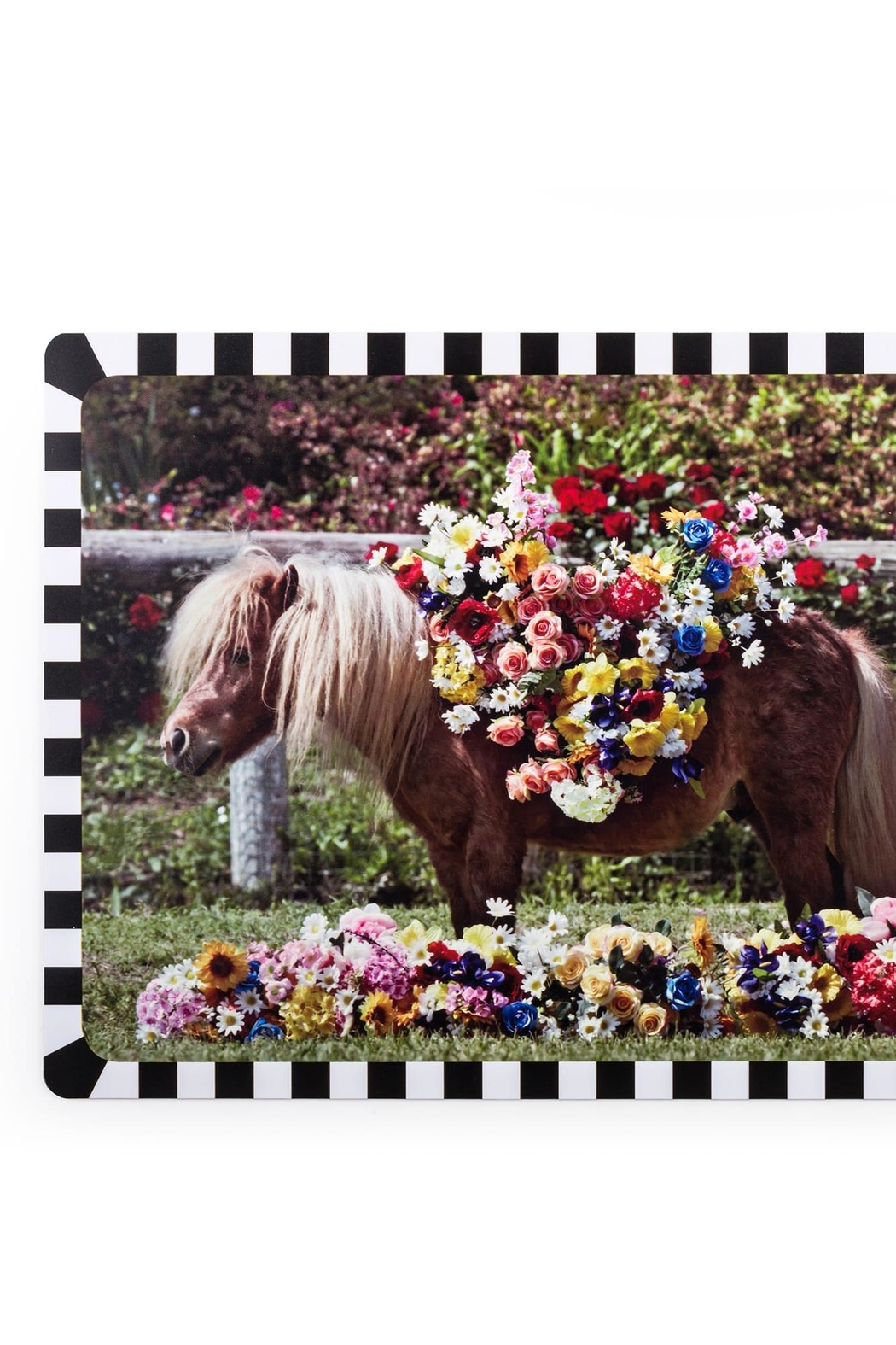 Seletti Tablemat Pony - Front Full Image