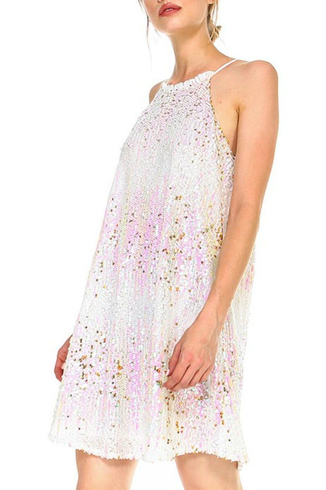 TCEC Sequin Cami Dress - Front Cropped Image