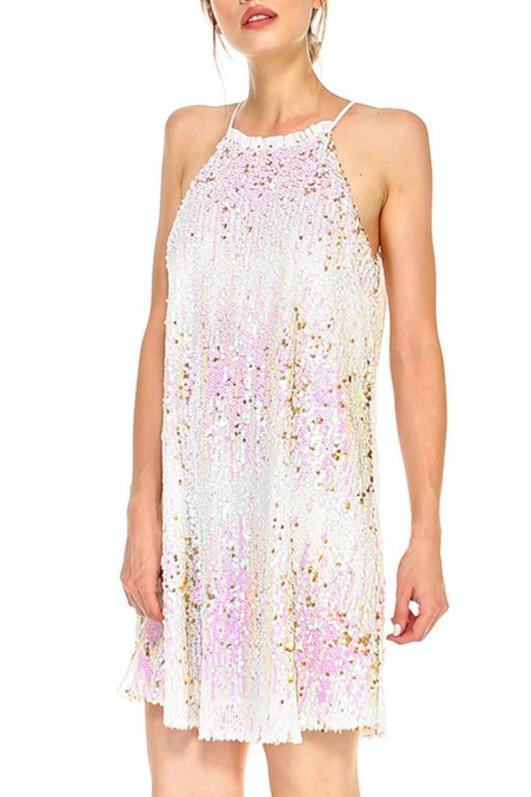 TCEC Sequin Cami Dress - Front Full Image