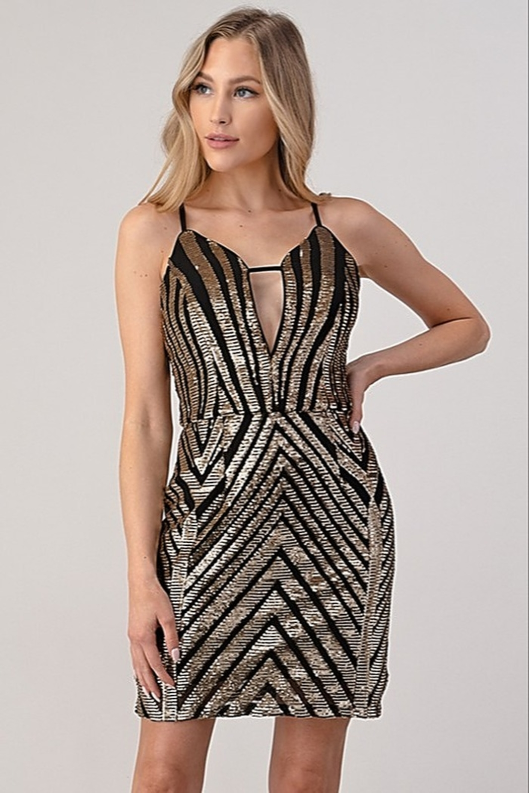 Minuet Sequin Cocktail Dress - Front Full Image