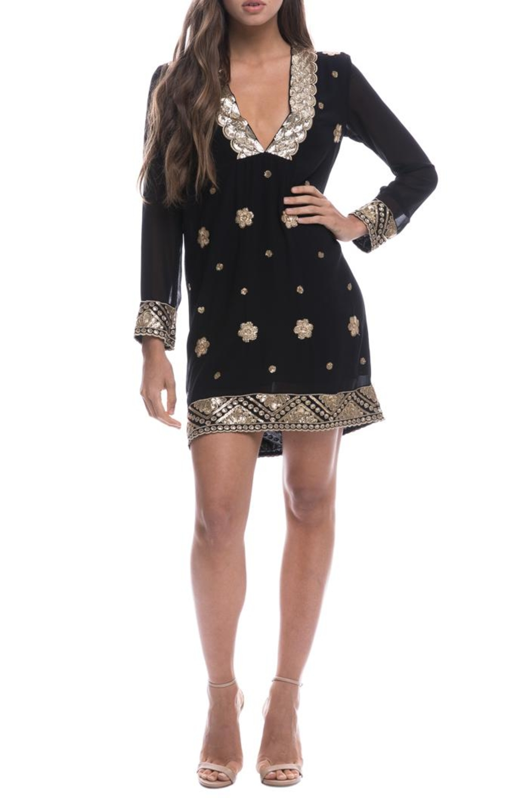 Endless Rose Sequin Embroidered Shift-Dress - Main Image