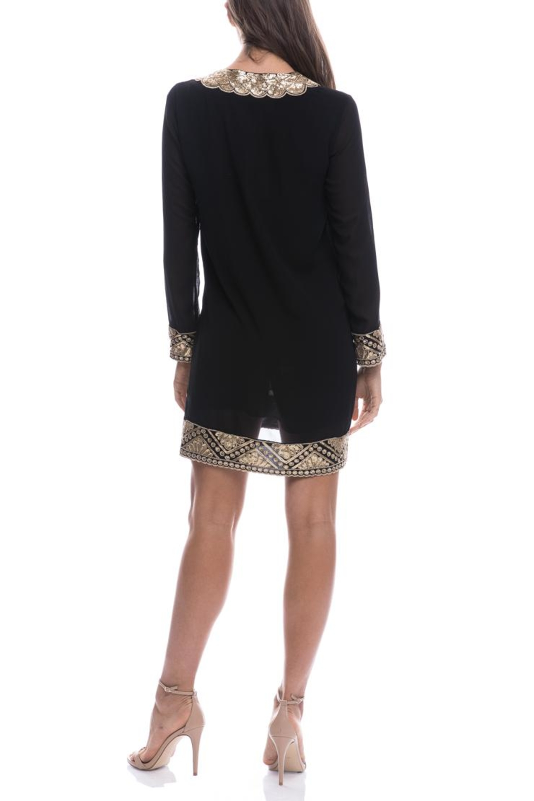 Endless Rose Sequin Embroidered Shift-Dress - Front Full Image