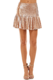 TCEC Sequin Flare Skirt - Product Mini Image