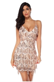 Banjul Sequin Fringe Dress - Product Mini Image