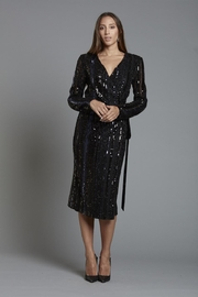 70s Prom, Formal, Evening, Party Dresses Sequin Wrap Dress $405.00 AT vintagedancer.com