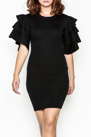 settle down Ruffle Sleeve Dress - Front cropped
