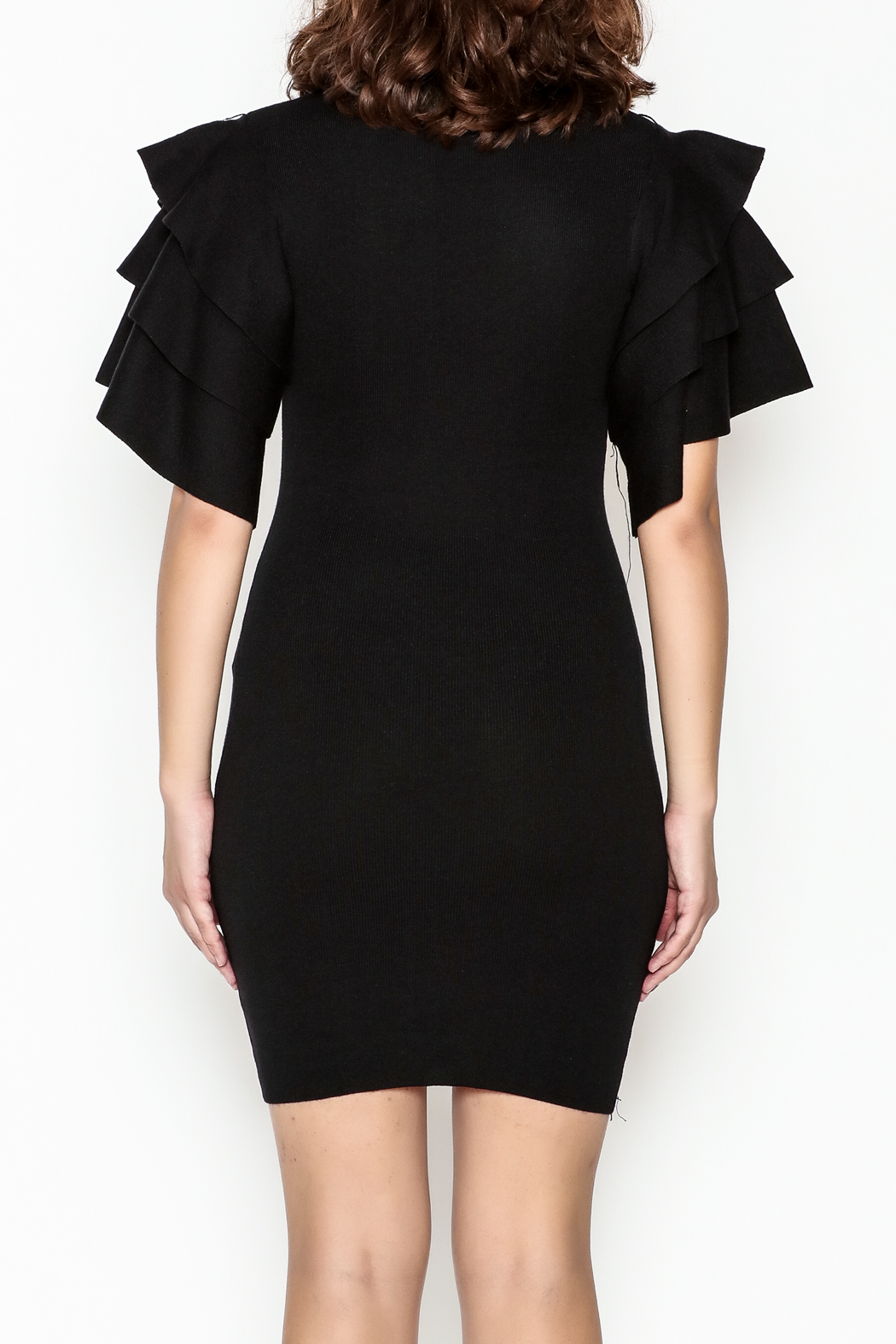 settle down Ruffle Sleeve Dress - Back Cropped Image