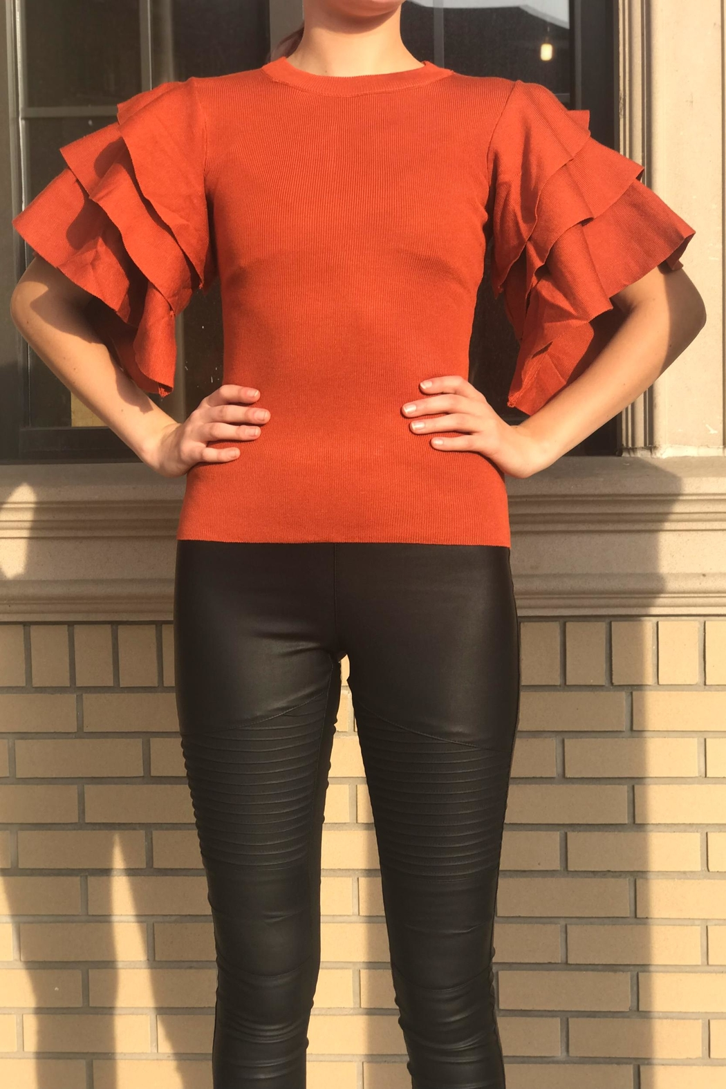 settle down Ruffle Sleeve Top - Front Cropped Image