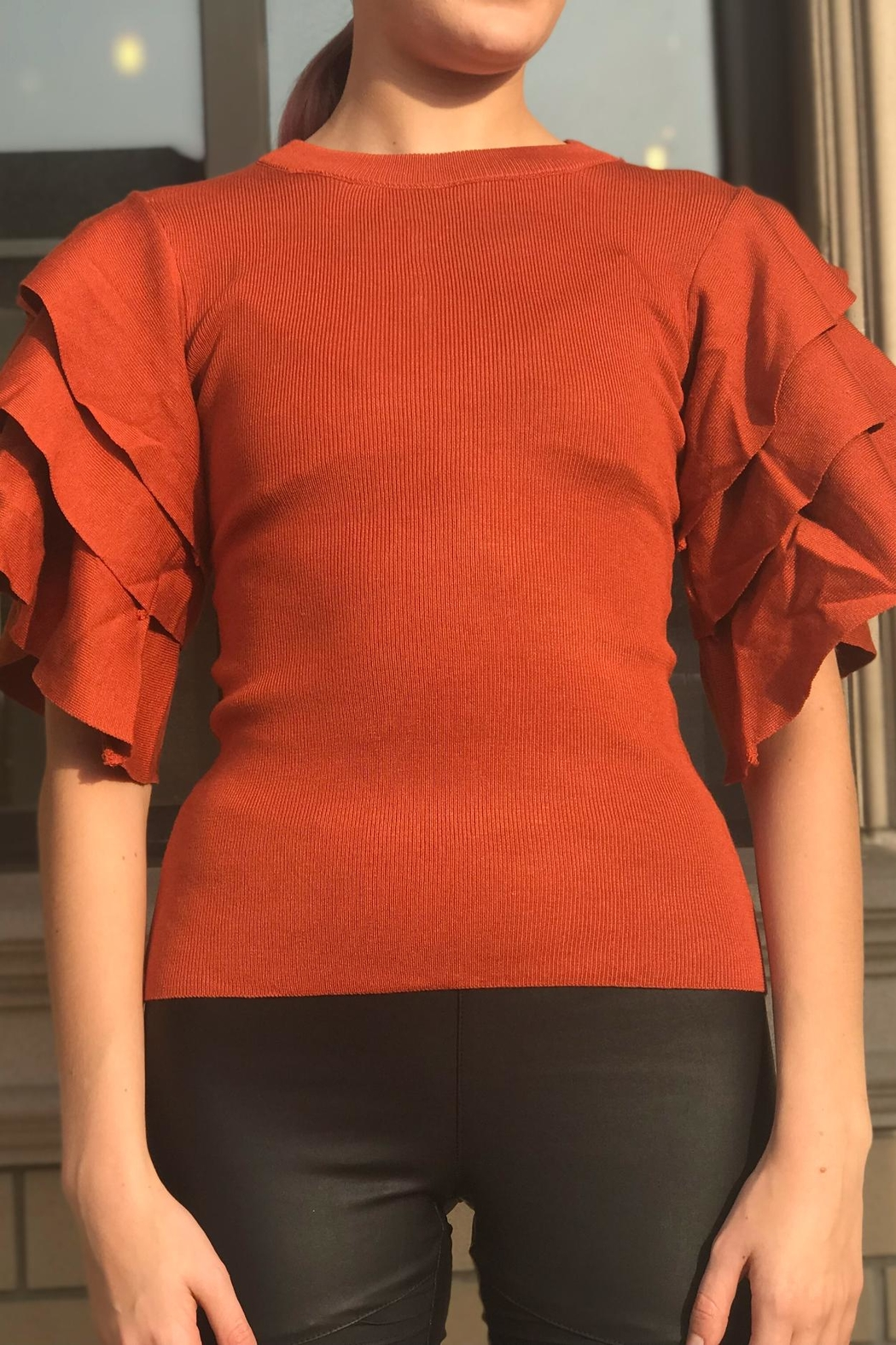 settle down Ruffle Sleeve Top - Side Cropped Image