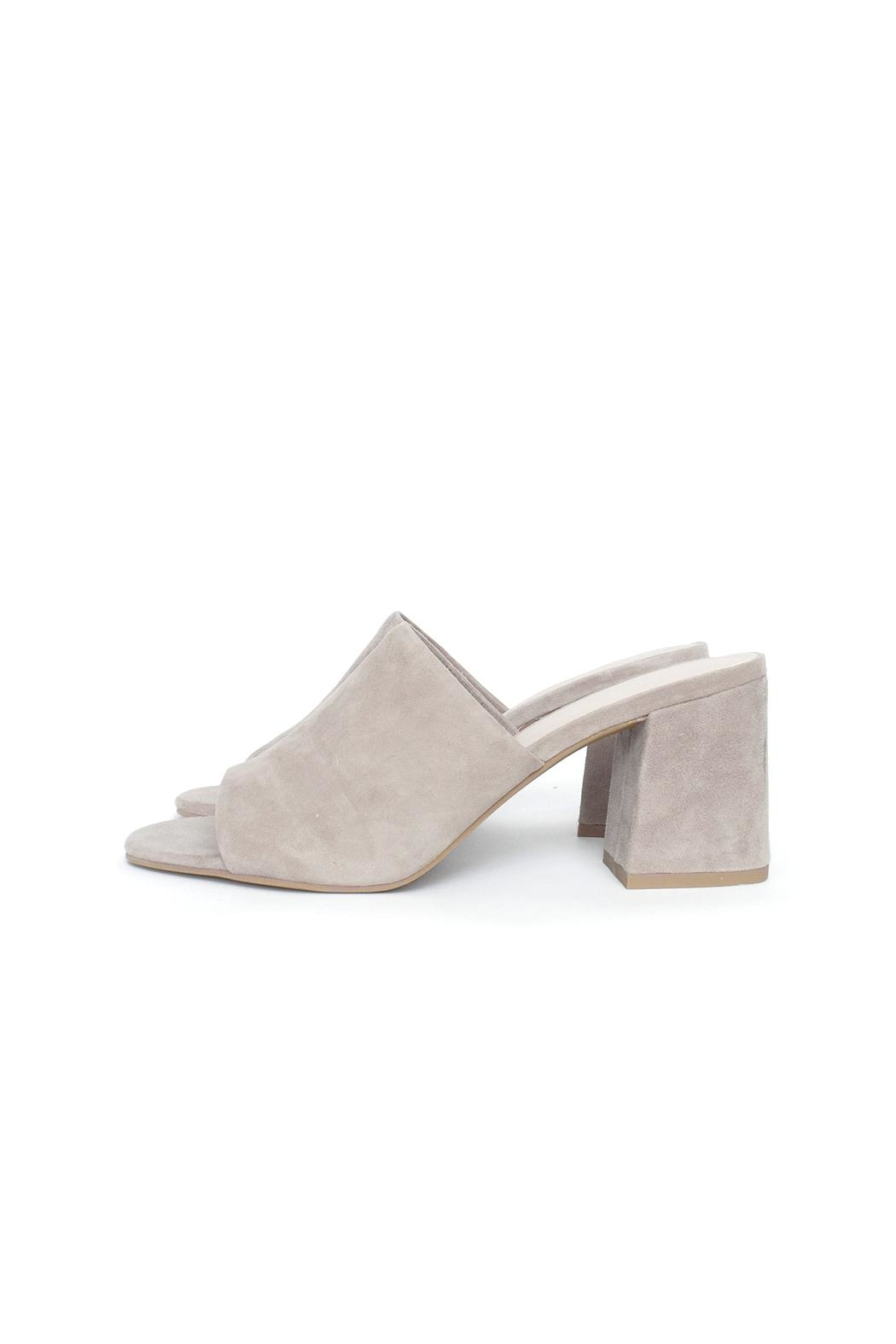 Seychelles Suede Mule Heel - Front Cropped Image