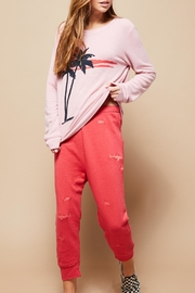 All Things Fabulous Shark Tank Sweats - Front cropped