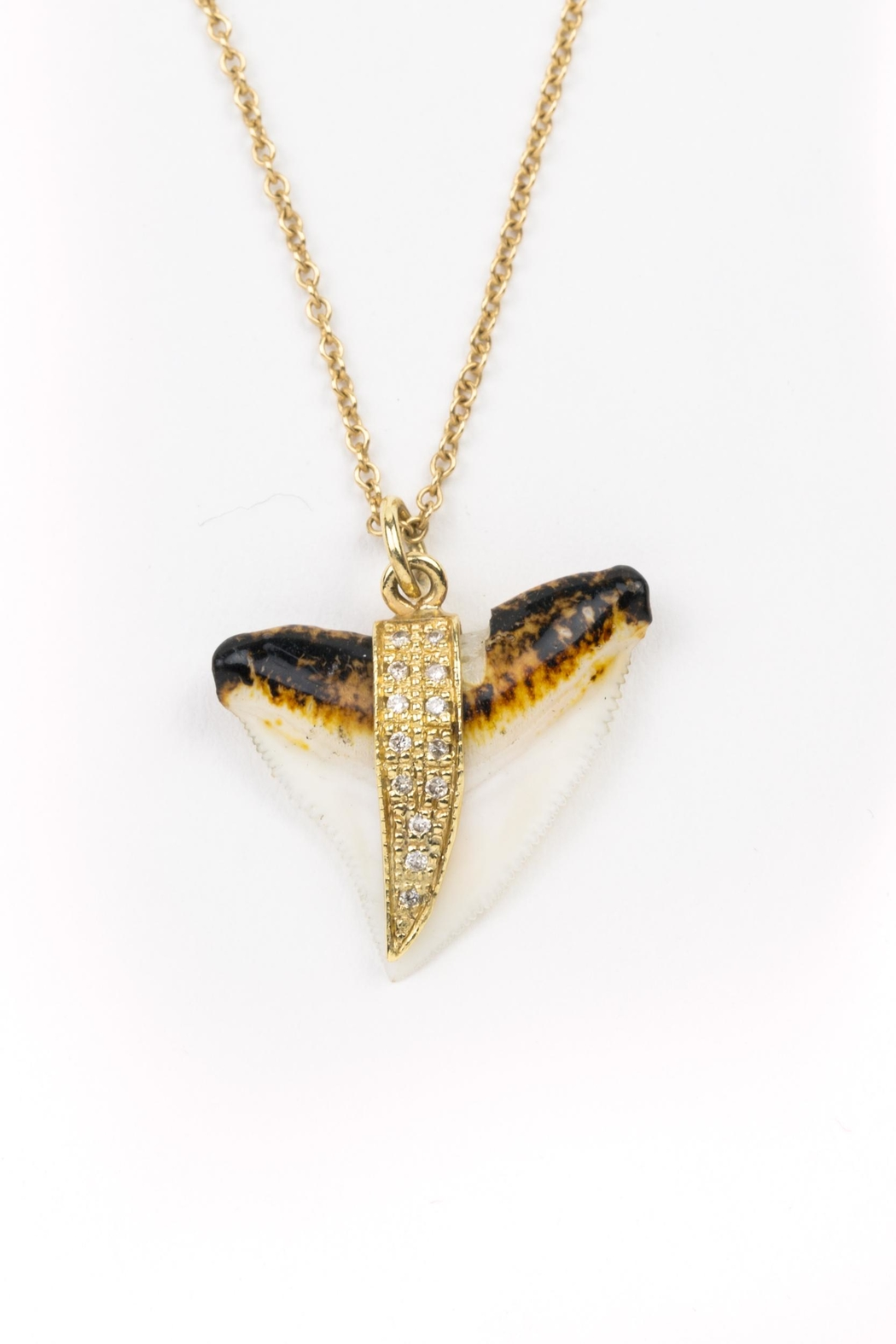 shark plated neckalce jewellery product cecilylondon tooth carat pendant com gold