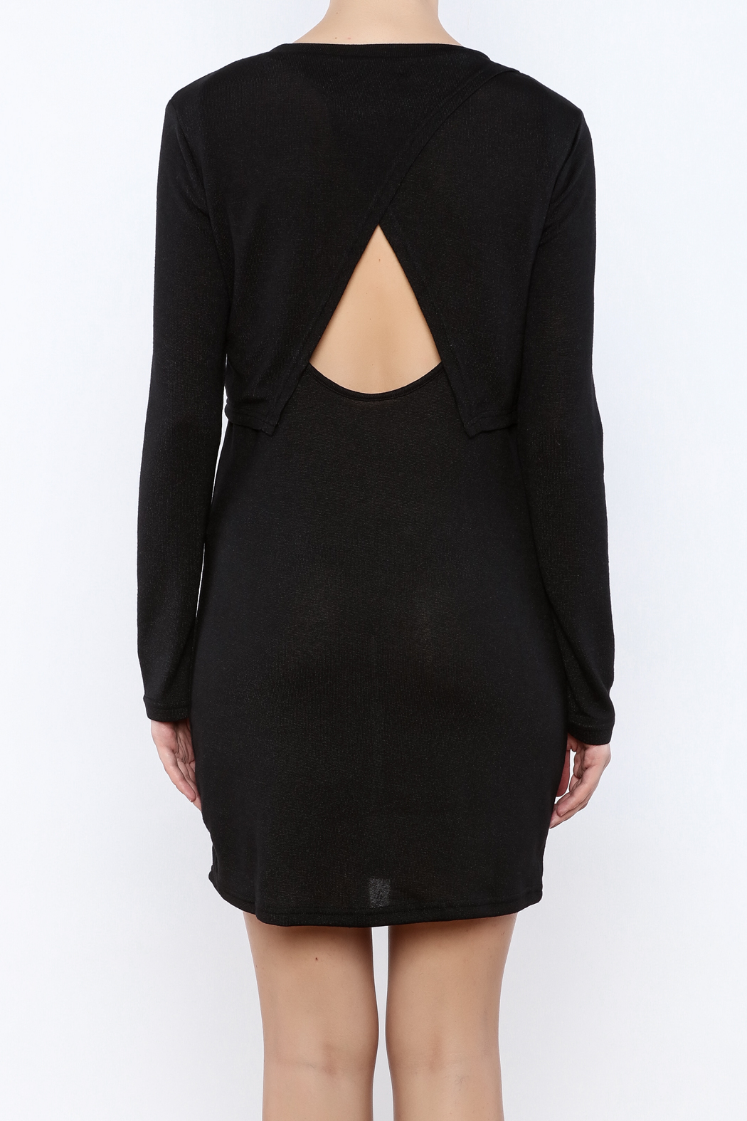 She + Sky Double Layer Dress - Back Cropped Image