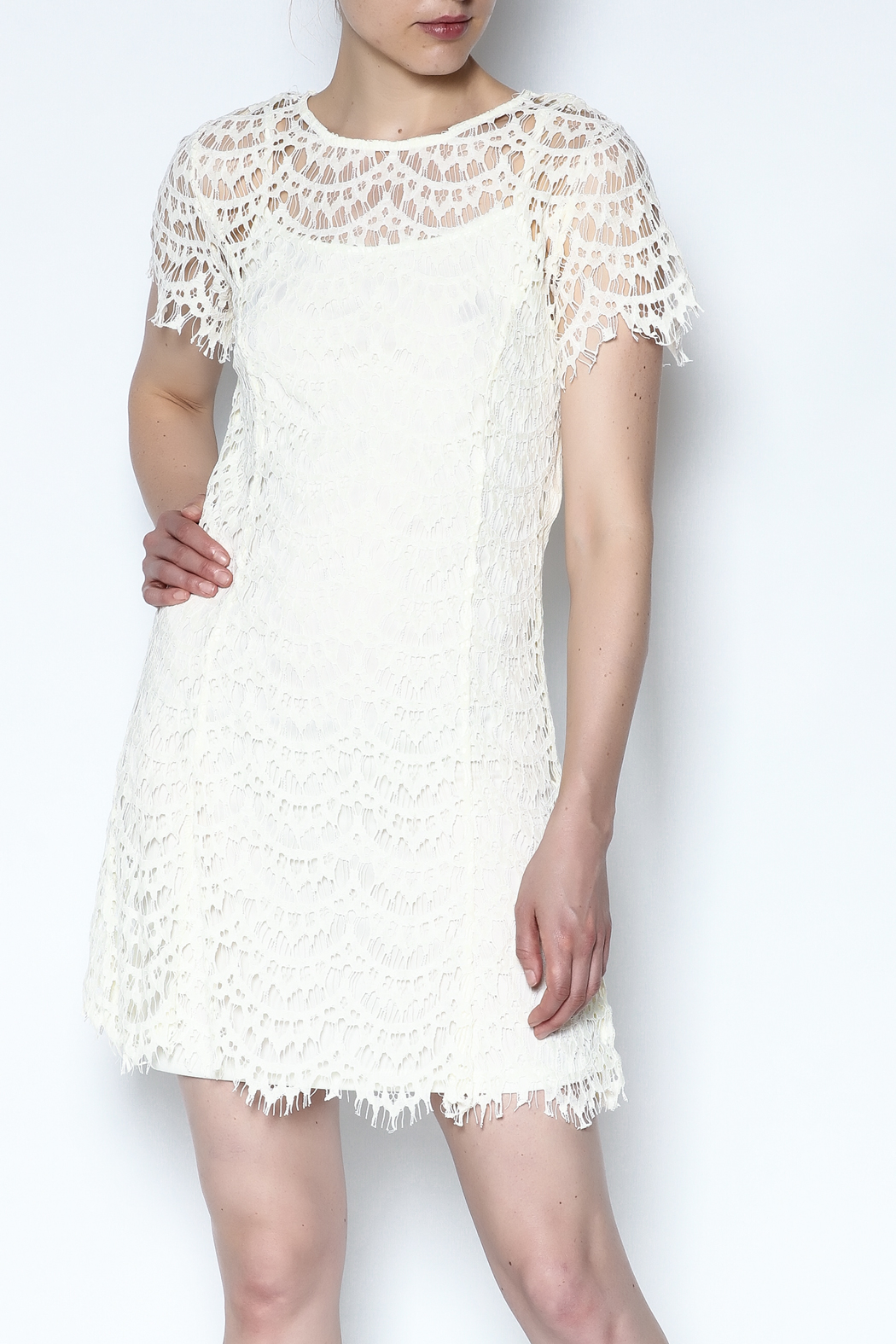 She + Sky Lace Overlay Dress - Front Cropped Image