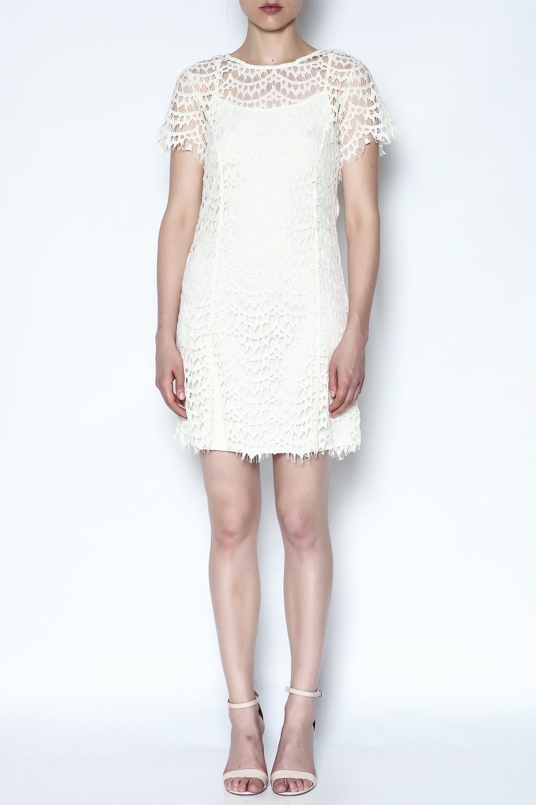 She + Sky Lace Overlay Dress - Front Full Image