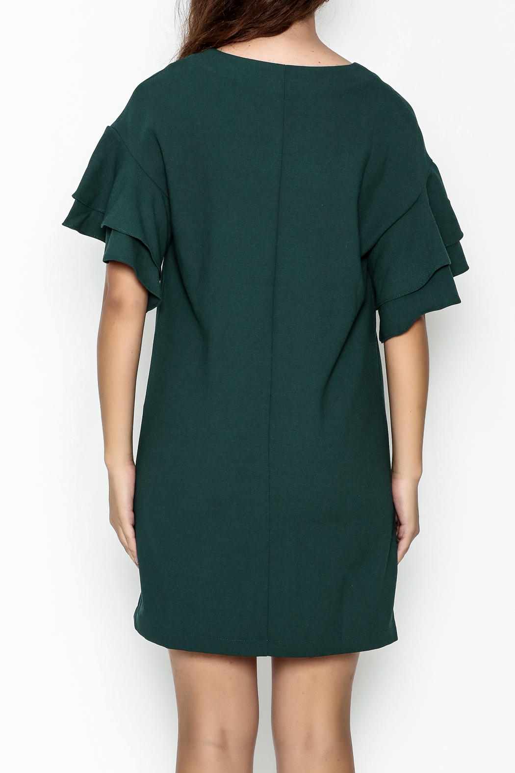 She + Sky Ruffled Sleeve Dress - Back Cropped Image