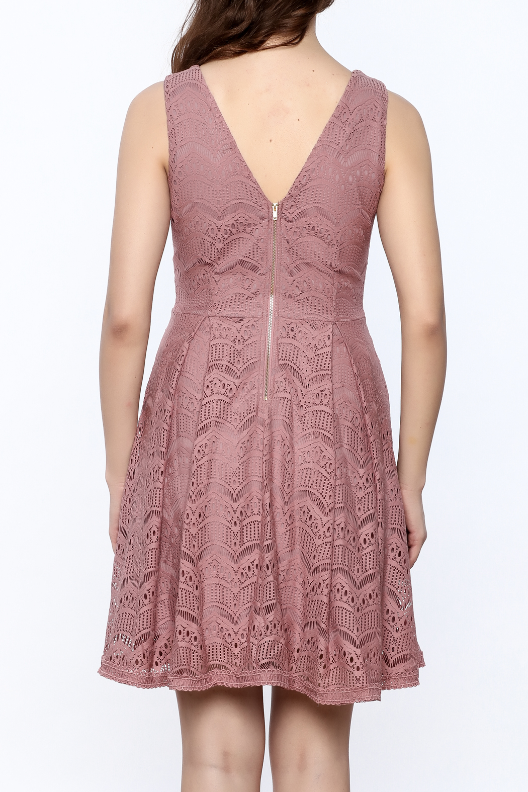 She + Sky Old Rose Lace Dress - Back Cropped Image