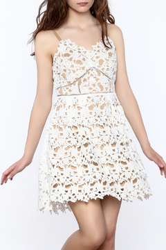 Shoptiques Product: Gabby Crochet Lace Dress