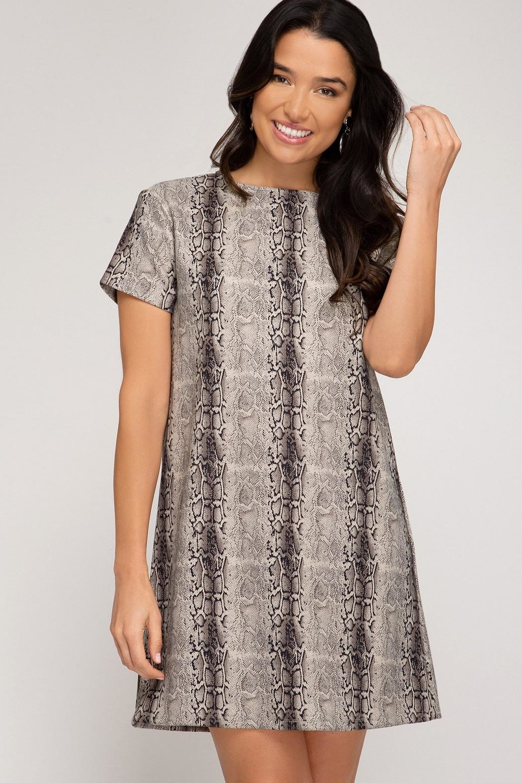 She + Sky Birch Dress Stone - Front Cropped Image