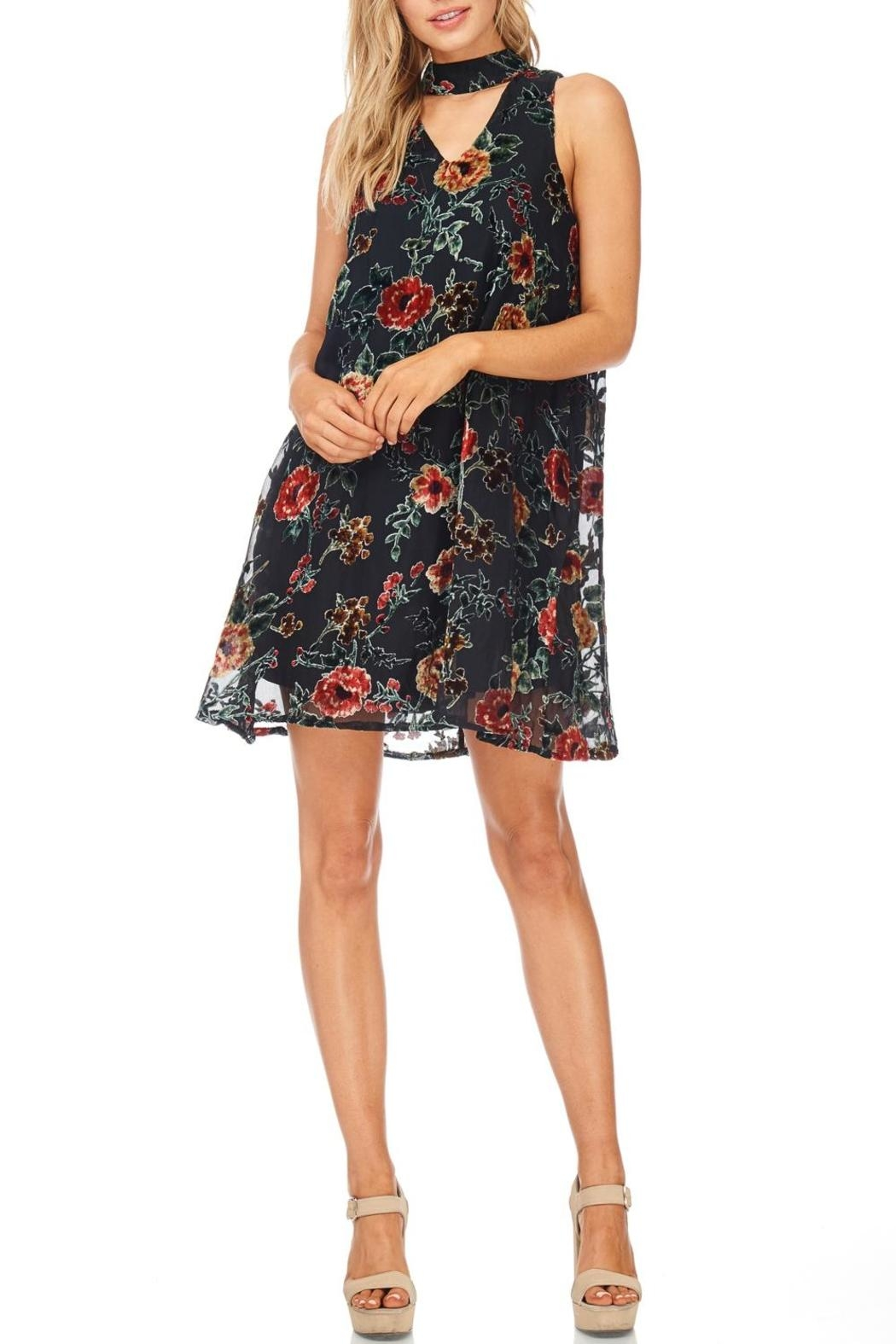 She + Sky Black Floral Velvet Dress - Front Cropped Image