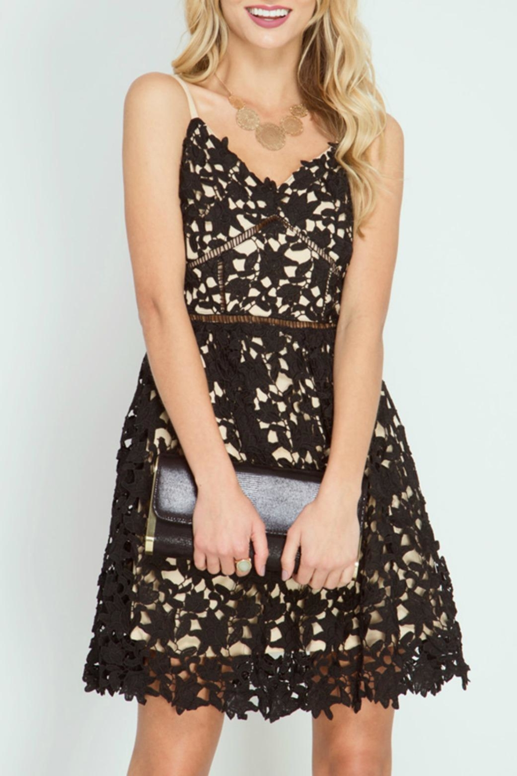 She + Sky Black Lace Dress - Front Cropped Image