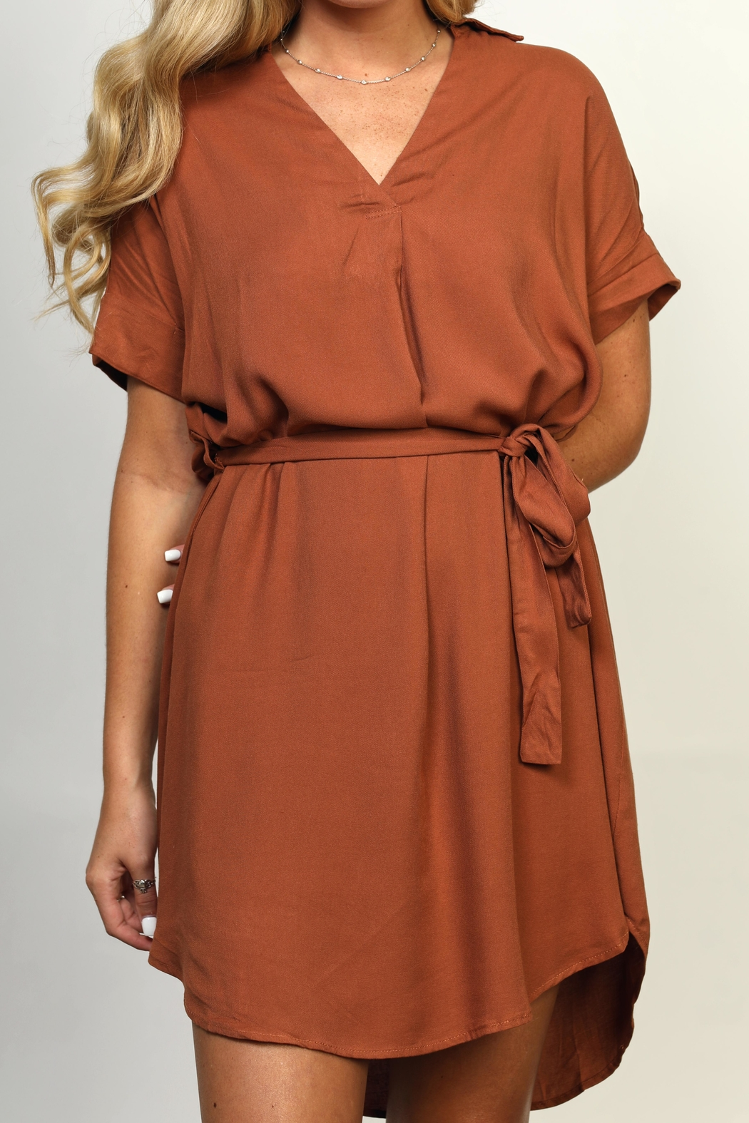 She + Sky Collared High-Low Dress - Side Cropped Image